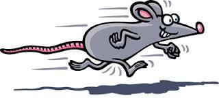 бежит мышка_